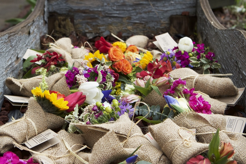 Flowers for Dreams Mini Bouquets